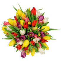 Seasonal Tulips Bouquet